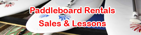 paddleboard rentals sales and lessons