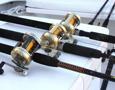 saltwater trips/charters fishing gear in naples florida