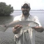 Johns redfish