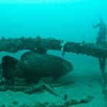 paddlewheel wreck 3 (8 of 8)