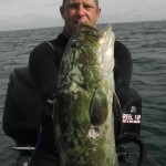 spearfishing big gag grouper