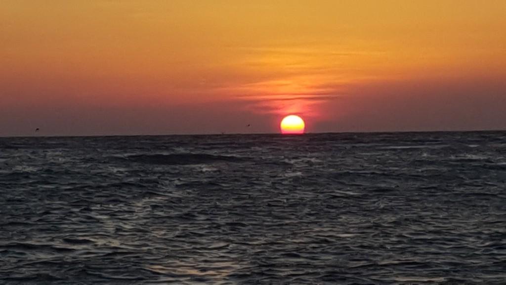 naples sunset cruise
